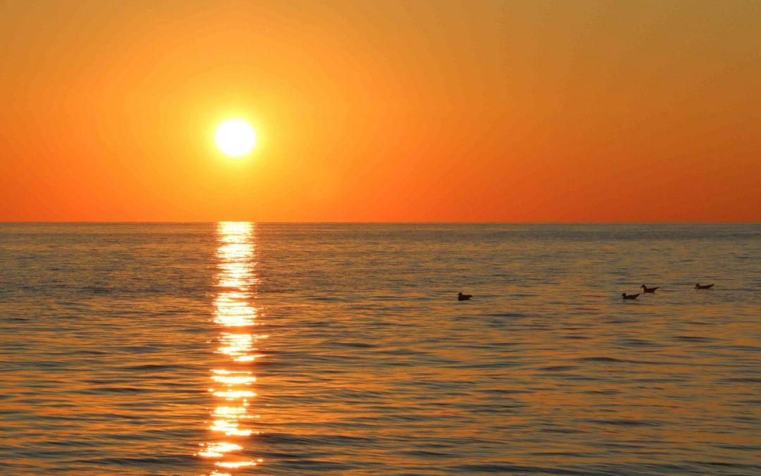 Escursione all'Asinara al tramonto in Catamarano con aperitivo