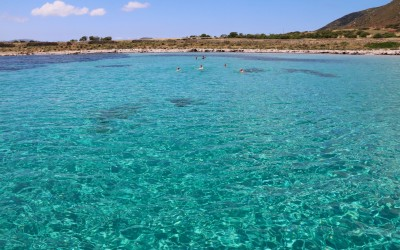 Escursioni naturalistiche in barca nel Parco Nazionale dell'Asinara, Sardegna.