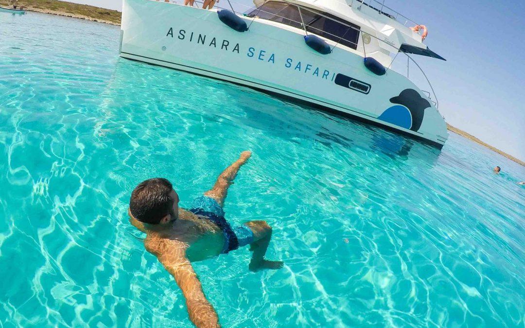 Escursioni Guidate Asinara Sea Safari Mezza Giornata