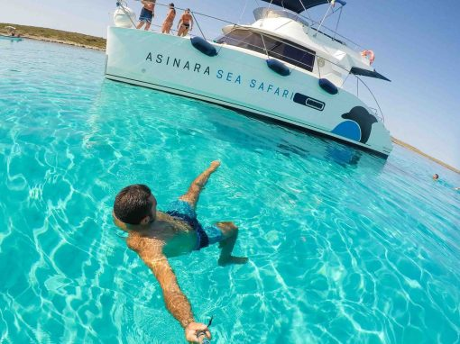 Asinara Sea Safari Boat Trips