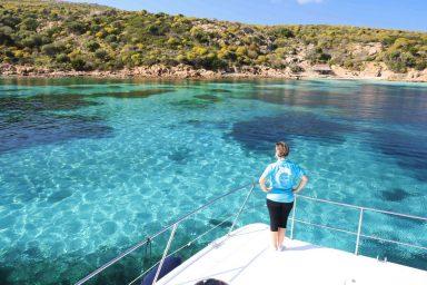 Escursioni Guidate Asinara Sea Safari Mezza Giornata in Catamarano