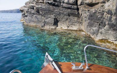 La vita nel sottocosta, un immenso mondo da scoprire. Isola dell'Asinara.