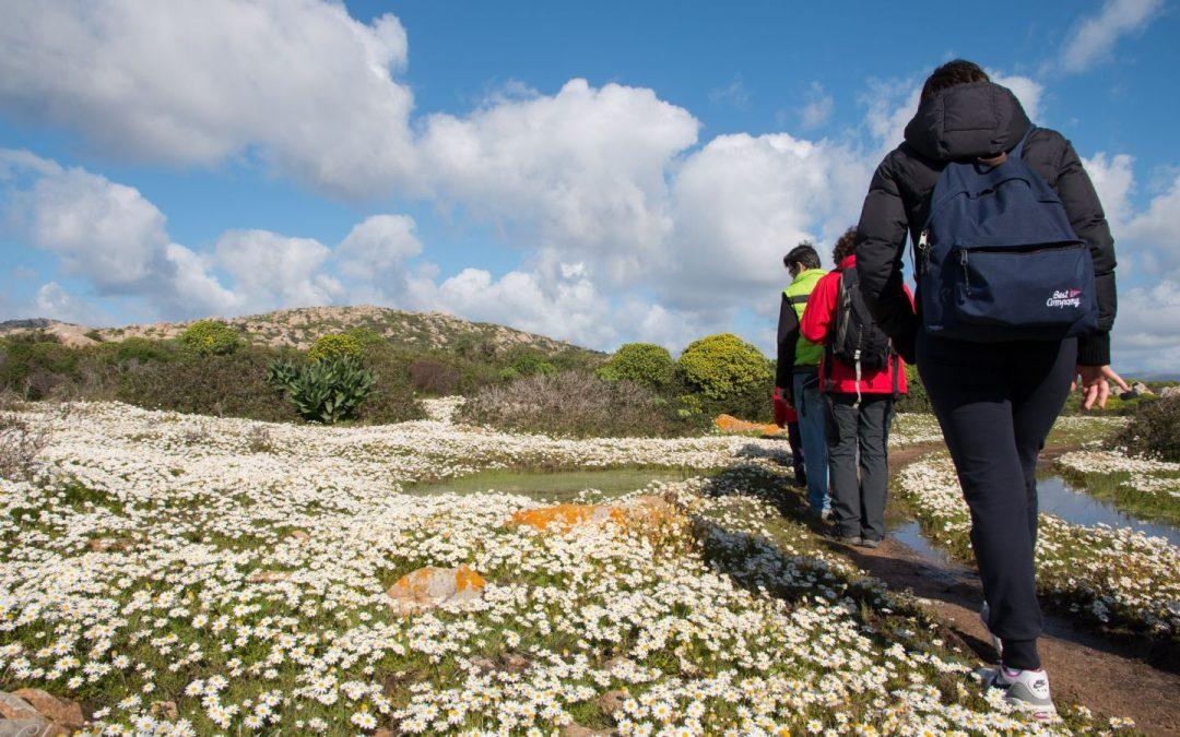 Trekking Asinara Sentiero del Granito