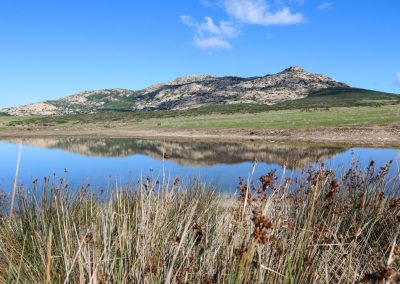 Walking Safari e Trekking all'Asinara