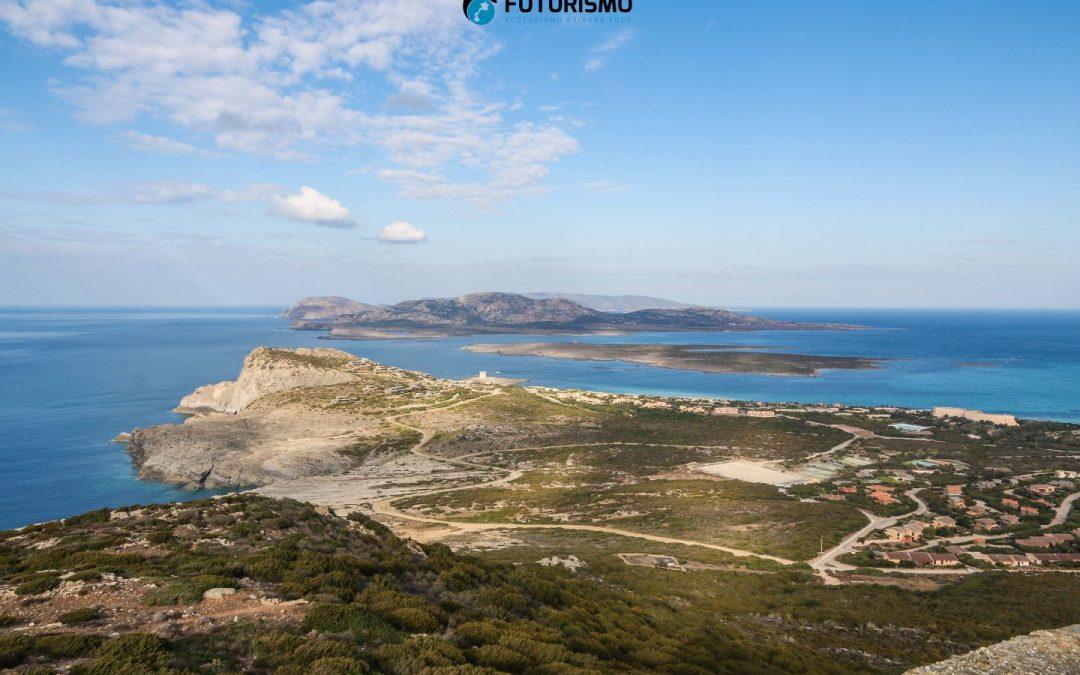 Progetto Asinara Seascape, Università degli Studi di Sassari