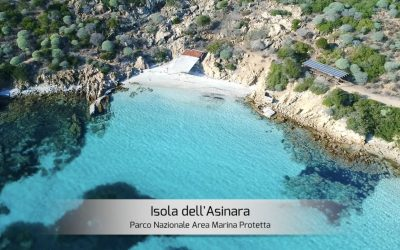 Isola dell'Asinara perla del Mediterraneo  Sardegna  Italia