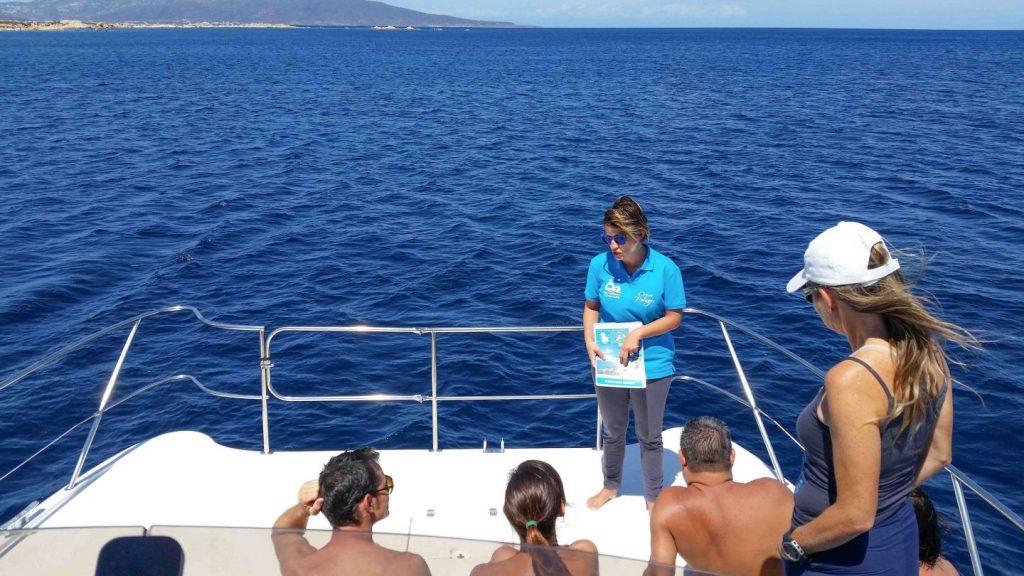escursioni guidate in catamarano