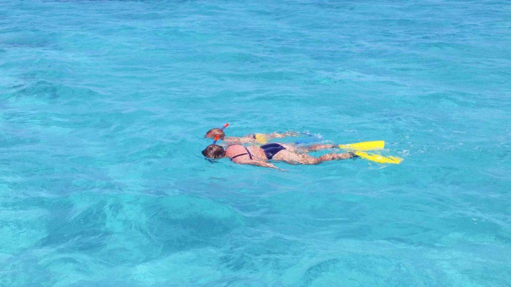 snorkeling nelle acque turchesi del parco asinara