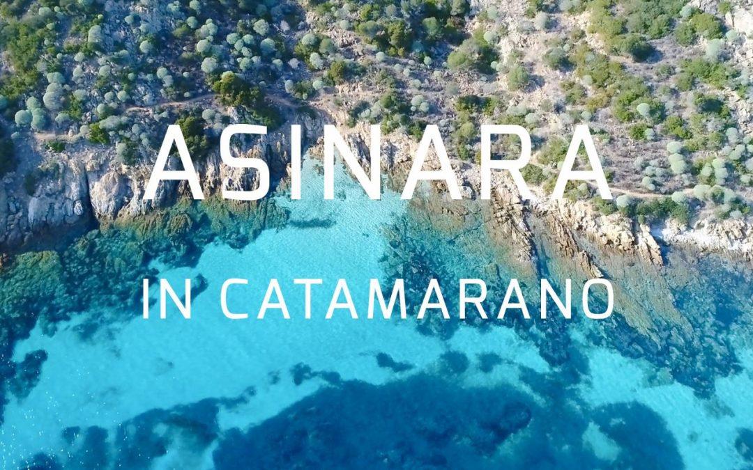 Promo Primavera 2018 Escursioni Asinara in Catamarano