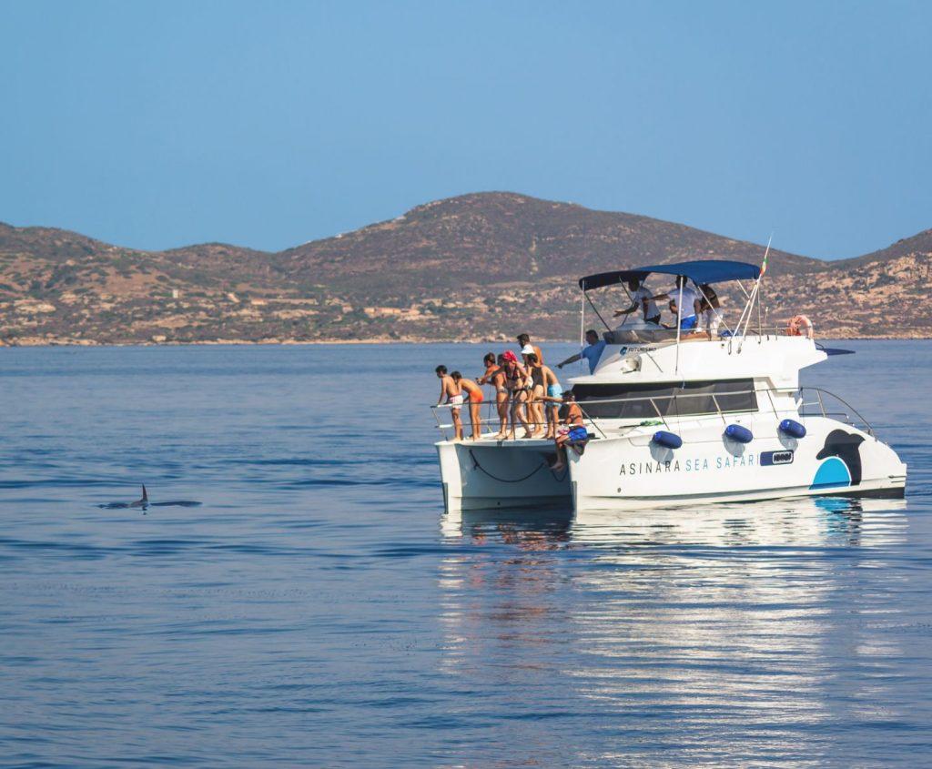 Una delle emozioni più grandi che si possano provare durante le Escursioni all'Asinara è l'incontro con i Delfini nel loro habitat naturale. Foto di Luca Porcheddu ©.